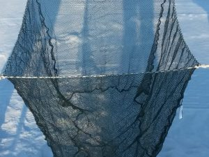 Cage net without laminated frame 1 x 1,5 x 1m – Nylon 5/0,6 mm black